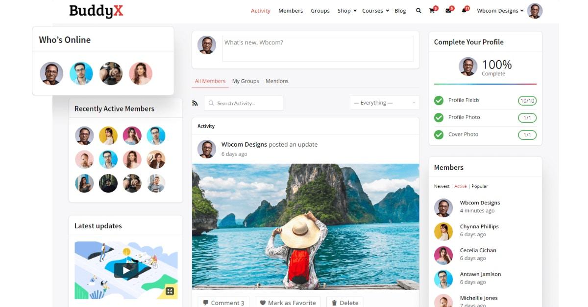 Say Hello To WordPress Social Network Theme BuddyX – Free Version