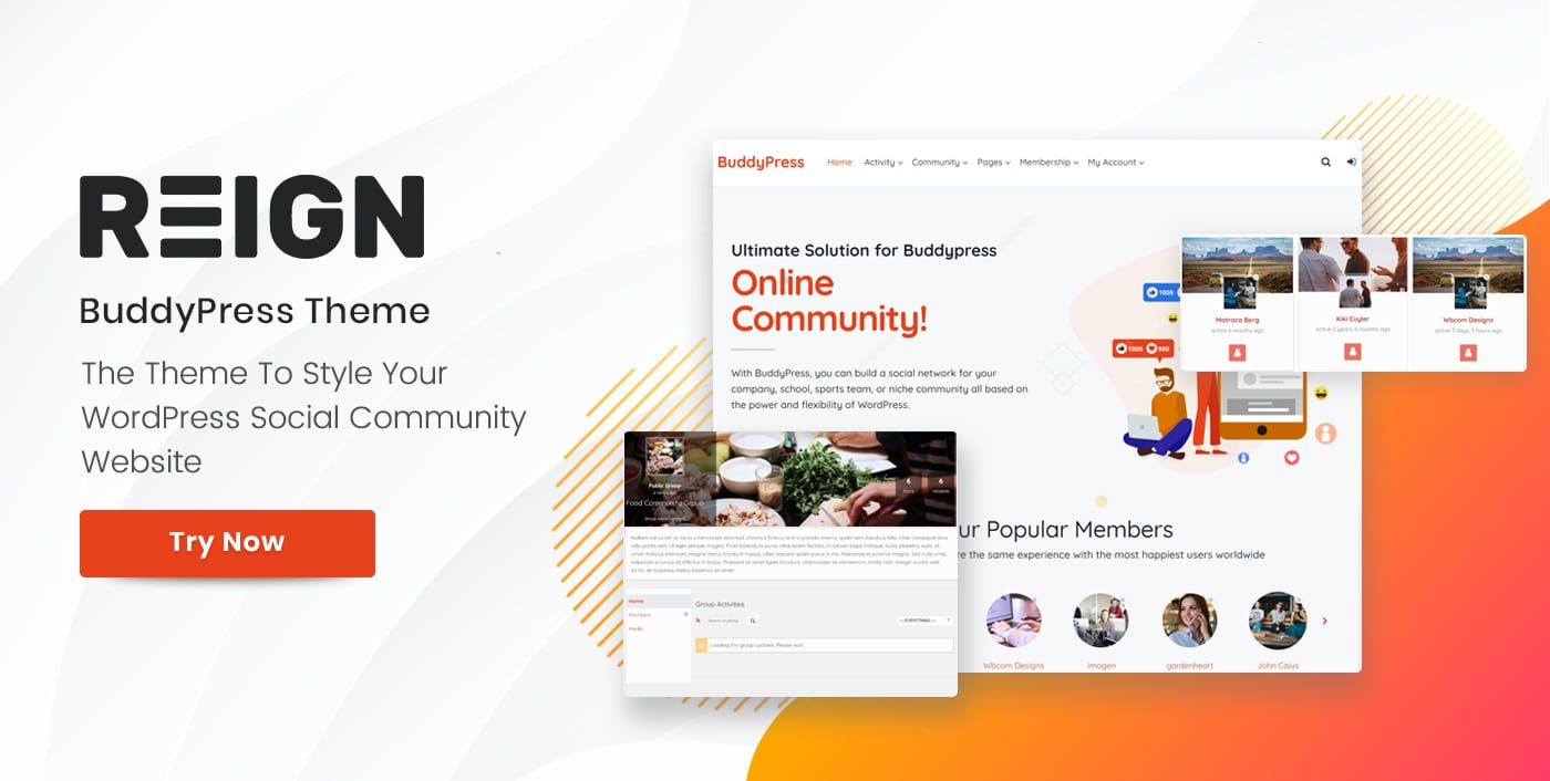 Free And Premium WordPress BuddyPress bbPress Themes 2020